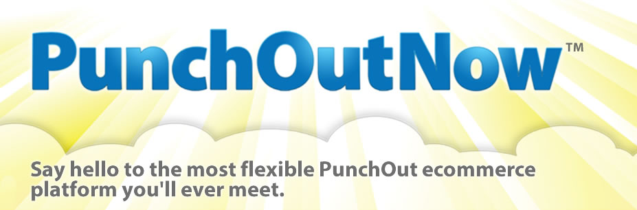 Certified PunchOut websites integrating with over 10 leading eprocurement systems including Ariba, SAP and more.
